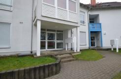 VERMIETET***Helles 1-Zimmer-Apartment  mit Wintergartencharakter