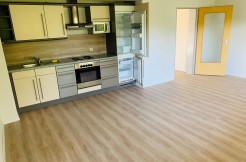 Neu renoviertes Apartment in Eckersdorf